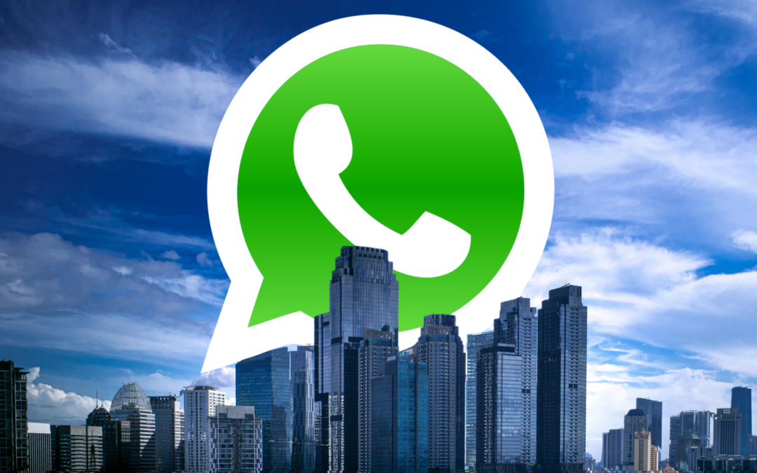 Learn to use WhatsApp for real estate agents and get the most out of your network of contacts